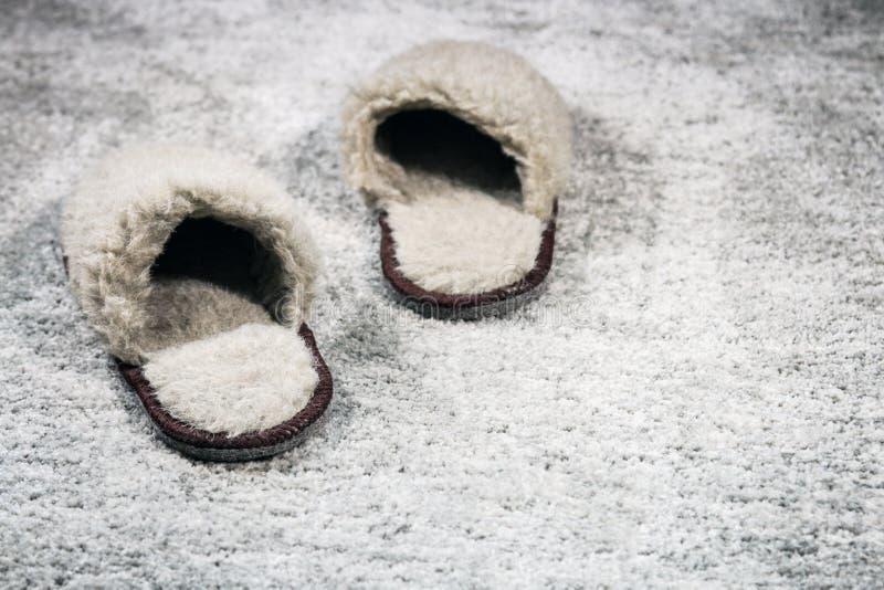 Marrone domestico simile a pelliccia delle pantofole sul tappeto fotografia stock