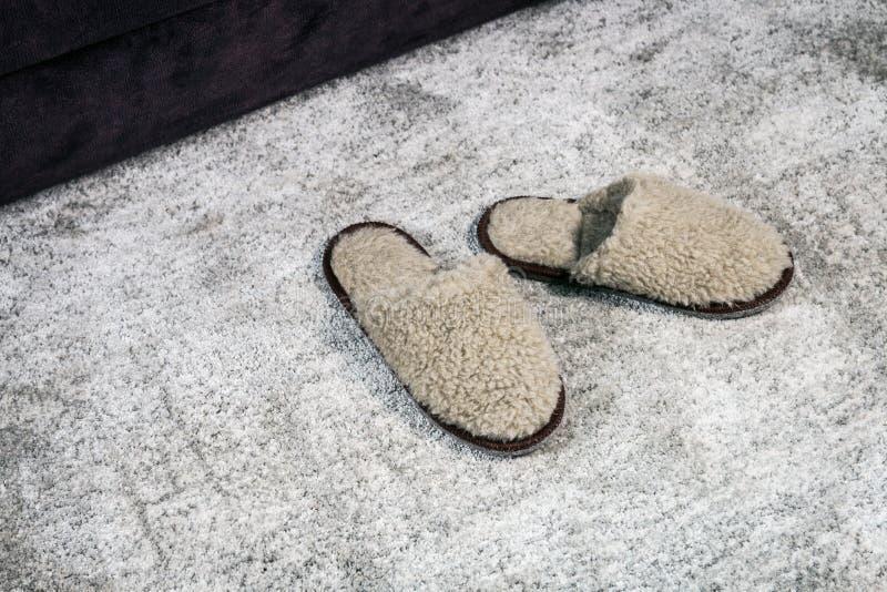 Marrone domestico simile a pelliccia delle pantofole sul tappeto immagini stock libere da diritti