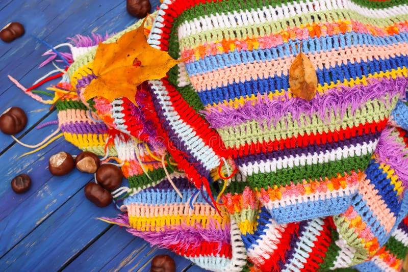 Marrons d'Inde sur le plaid rayé chaud lumineux à crochet photo stock