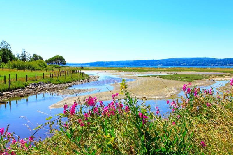 Marrowstone island. Olympic Peninsula. Washington State. stock photography