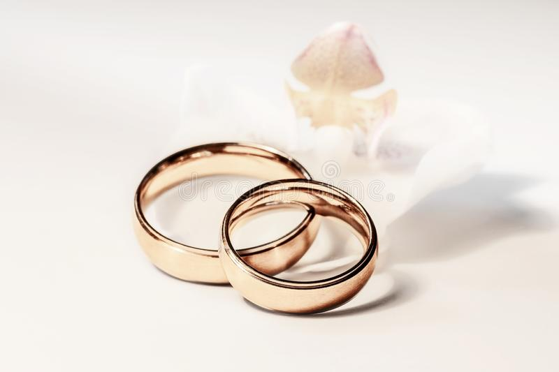 Marry me!. Marry me concept. Two wedding rings with blurred white orchid on white background royalty free stock image