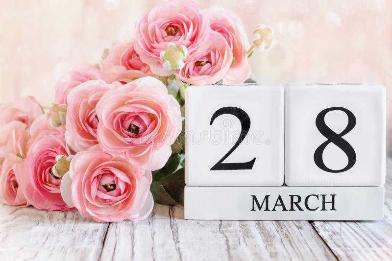 Mars 28:e kalenderblock med rosa Ranunculus royaltyfri foto