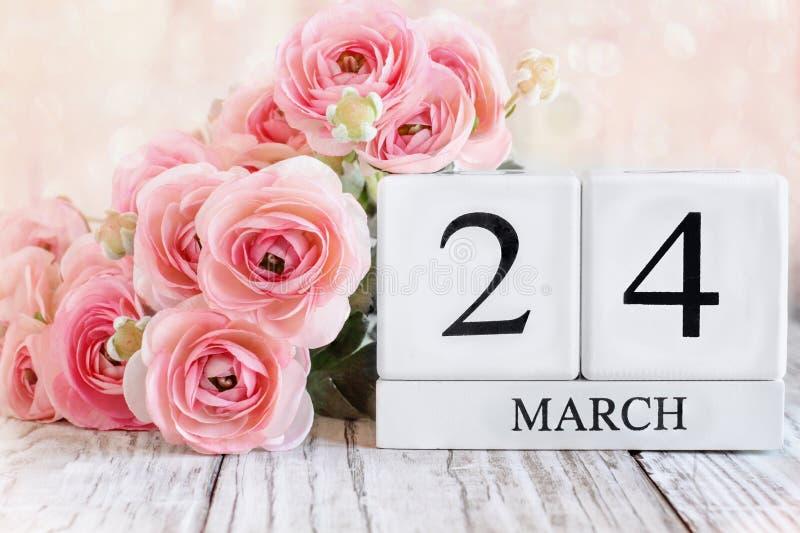 24 mars Kalenderblock med rosa Ranunculus royaltyfri bild