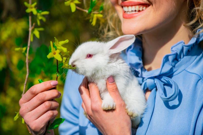 8 mars kvinnors dag Cute bunny En flicka som håller en liten vit kanin i handen Vänskap med påskbunny fotografering för bildbyråer