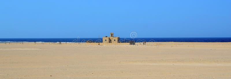 Έρημος Marsa alam στοκ εικόνα με δικαίωμα ελεύθερης χρήσης