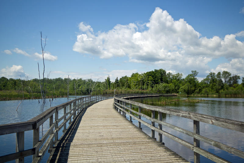 Marsh boardwalk, Canada. A wooden boardwalk passes through wetlands which provide excellent habitat for nesting and migratory birds at Bizard Island Nature Park stock image