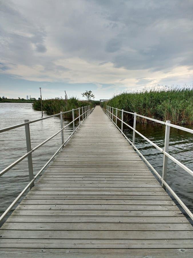 Marsh Discovery Trail, Kingsland-Kreek, Hackensack-Rivier, Meadowlands, NJ, de V.S. royalty-vrije stock foto's