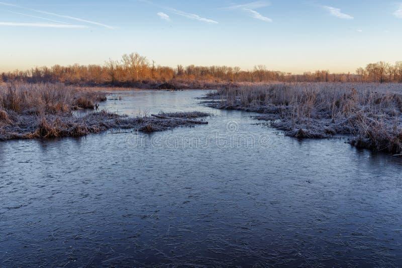 Marsh Pond congelé images stock
