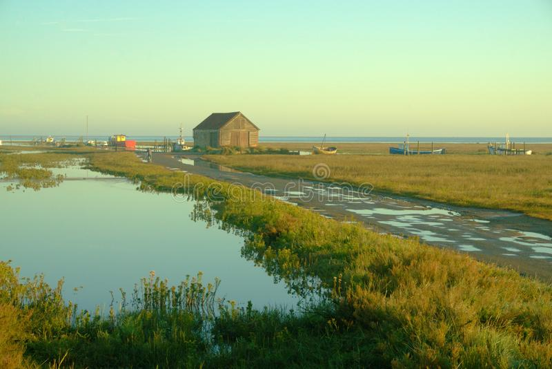 Marsh and tide. royalty free stock photo