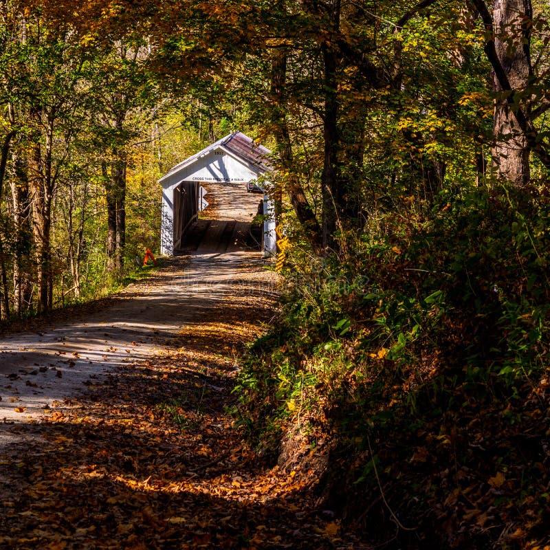 Marshall Covered Bridge royaltyfria bilder