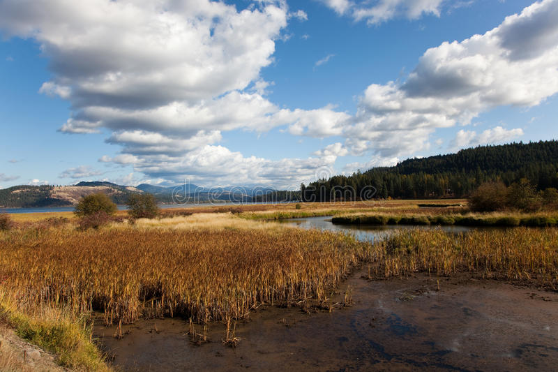 Marshes and Mountains royalty free stock images