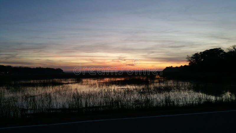 marshland imagem de stock royalty free