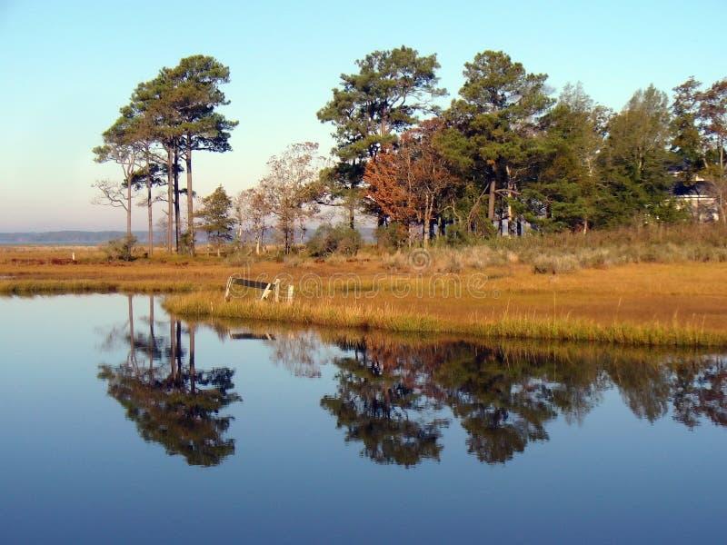 Marshland Reflection stock photo
