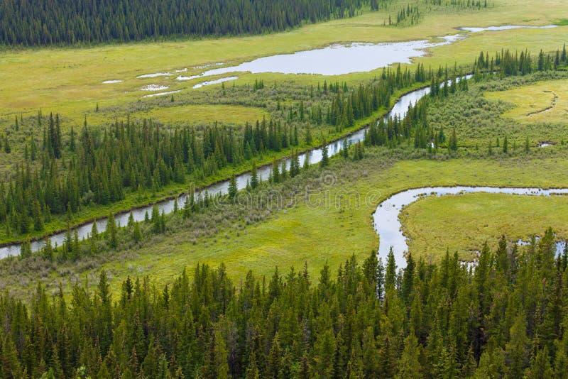 Marshland river riparian wetland landscape stock photo