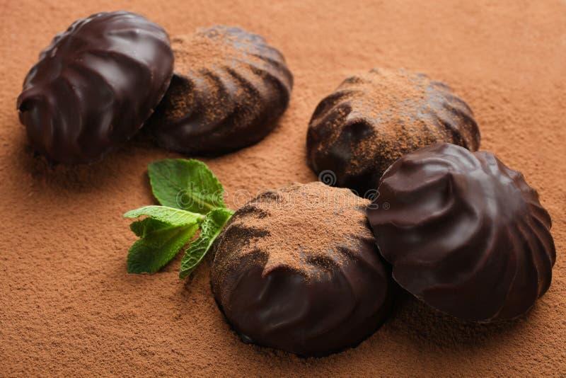 Marshmallow στη σοκολάτα και τη μέντα στοκ φωτογραφία με δικαίωμα ελεύθερης χρήσης