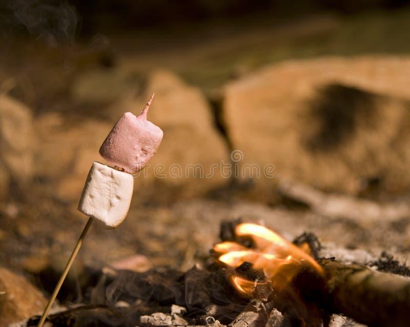 Marshmallow at campfire stock photo