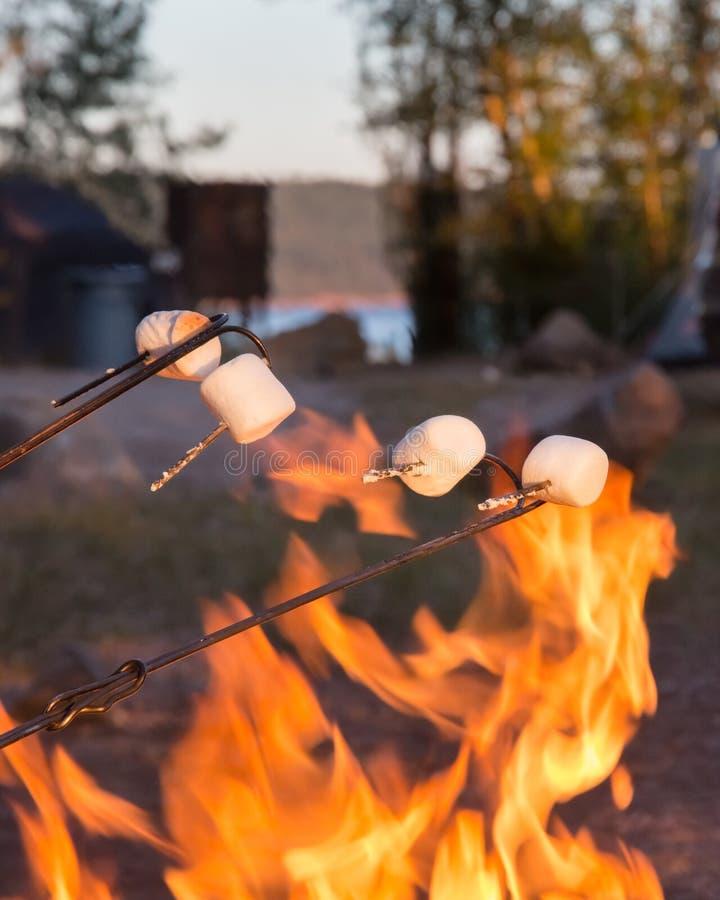 marshmallows zdjęcie royalty free