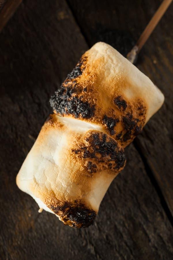 Marshmallows carbonizados e Roasted imagens de stock