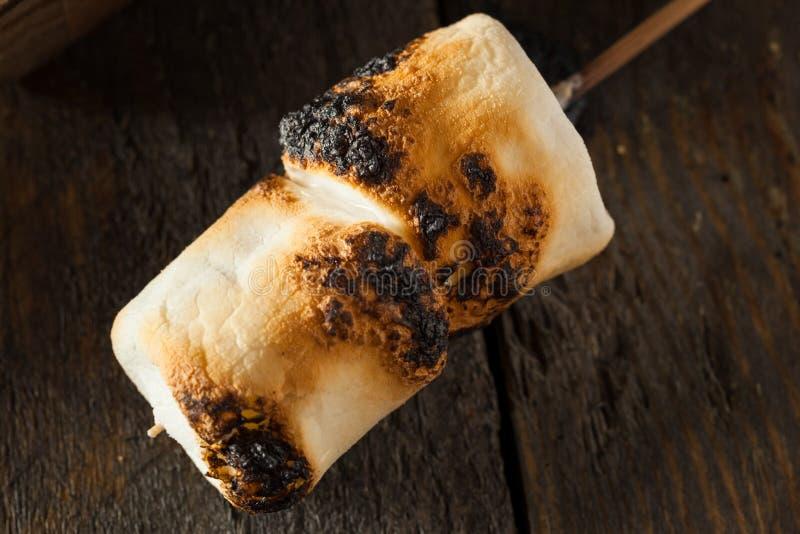 Marshmallows carbonizados e Roasted fotos de stock