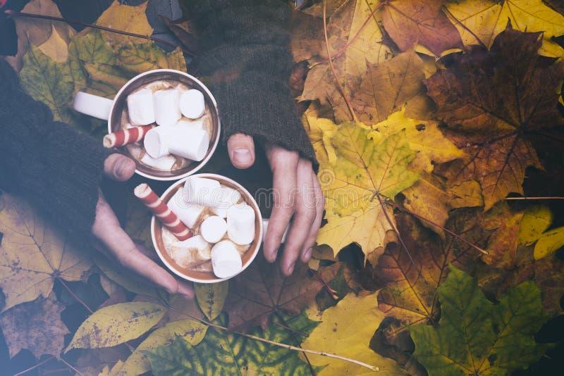 Marshmallows e marshmallow no fundo das folhas de outono fotografia de stock