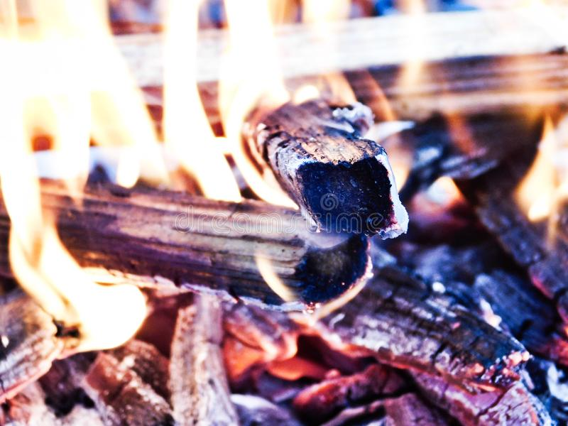 Marshmallows by the Fire royalty free stock photo
