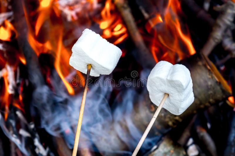 Marshmallows royalty free stock image