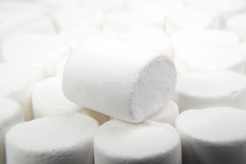 Marshmallows no branco sweetness imagens de stock