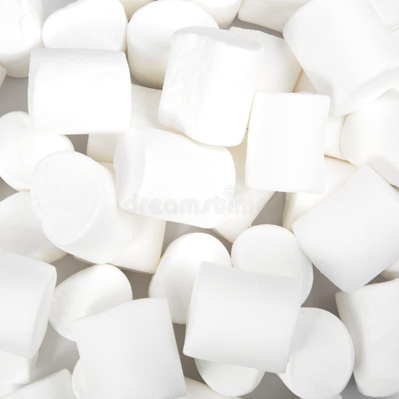 Marshmallows no branco sweetness fotos de stock royalty free