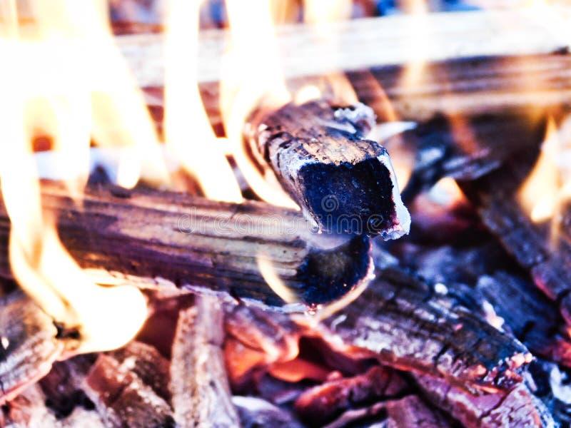 Marshmallows pelo fogo foto de stock royalty free