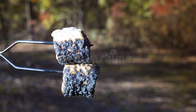 Marshmallows roasted fogueira imagens de stock royalty free