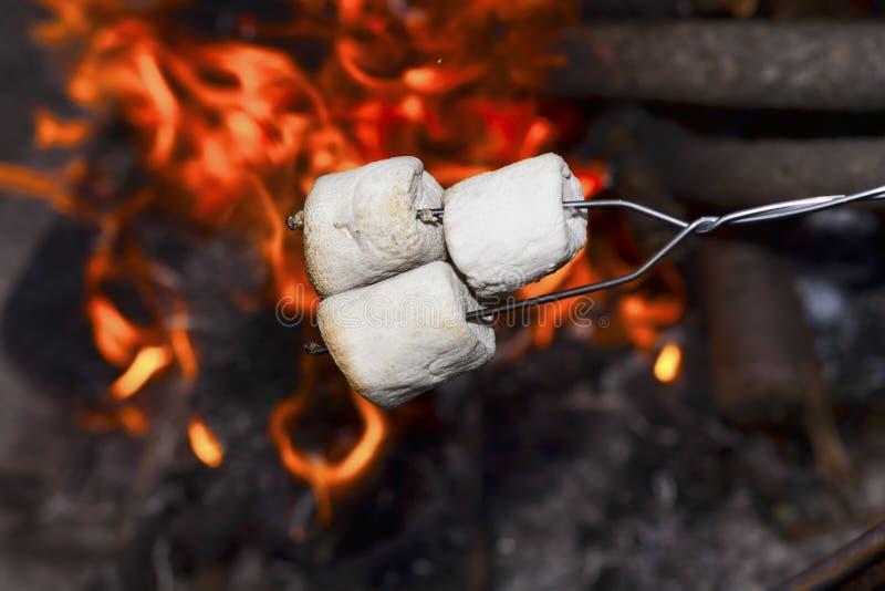 Marshmallows sobre o incêndio. imagens de stock royalty free