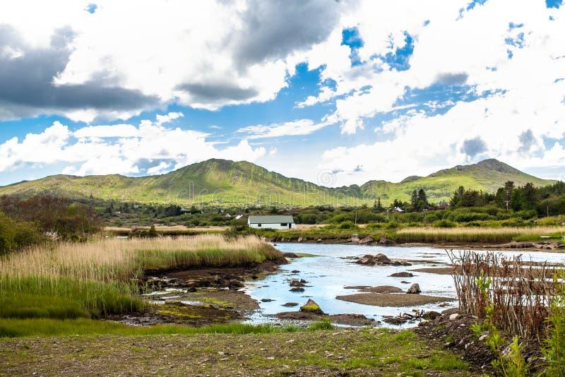 Marshy Wetland della Via Atlantico selvaggia, contea di Sneem Kerry fotografia stock