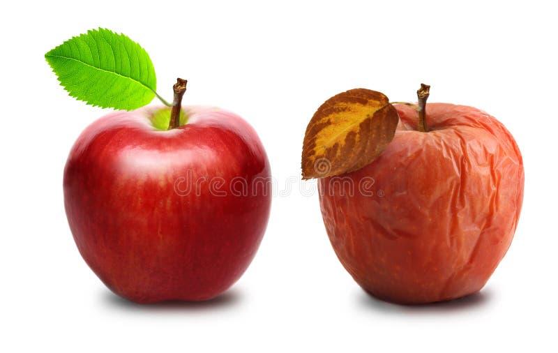 Marszczący i świeży jabłko odizolowywający zdjęcie stock