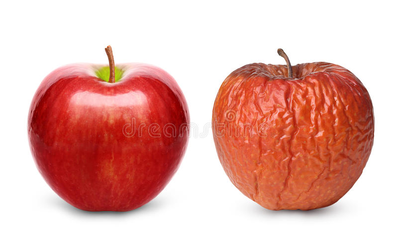 Marszczący i świeży jabłko odizolowywający fotografia stock