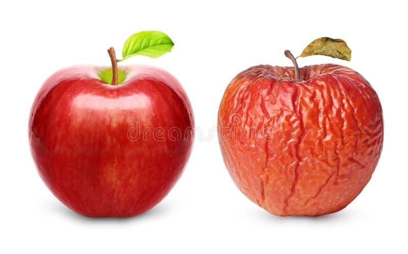 Marszczący i świeży jabłko odizolowywający obrazy stock