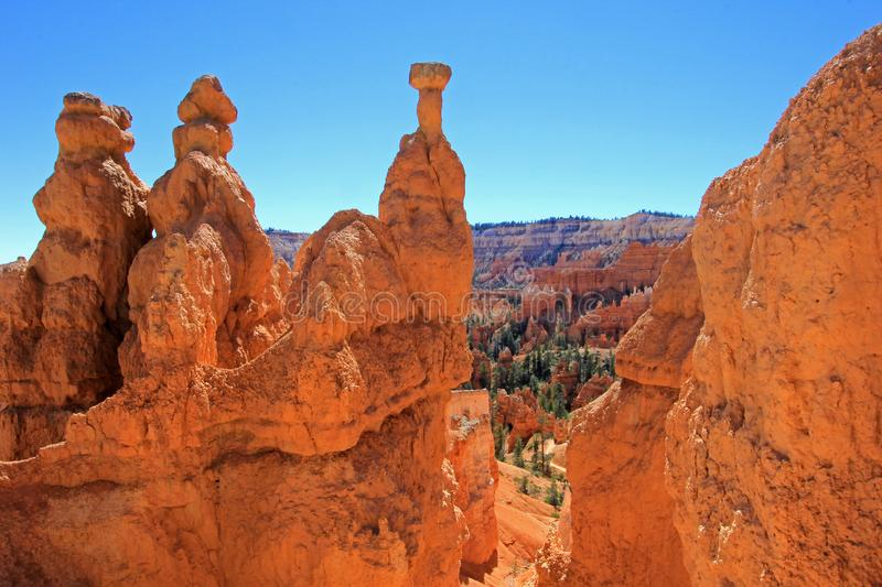 Martello del ` s di Thor in Bryce Canyon National Park, Utah, Stati Uniti immagine stock