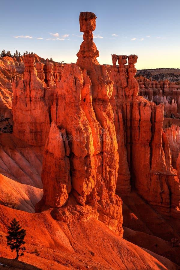 Martelo Utá de Bryce Canyon Sunrise On Thors foto de stock royalty free