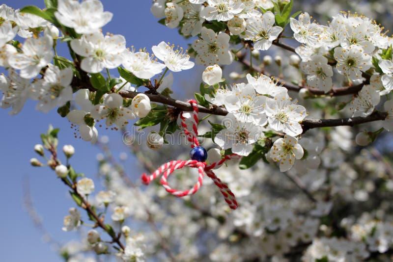 Martenitsa ha legato ad un albero di fioritura Martisor Festa di Baba Marta fotografia stock libera da diritti