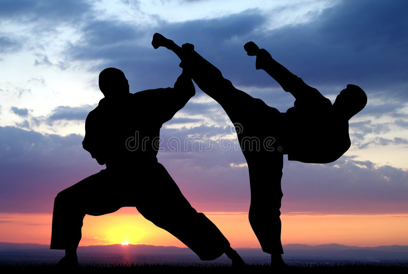 Download Martial art stock illustration. Image of illustration - 5603581