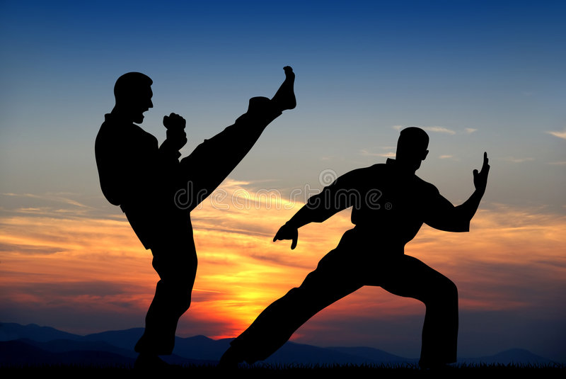 Martial art stock illustration
