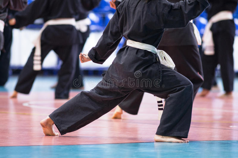 Martial art class. Martial arts, vovinam, Young pupil Learning the art stock photography