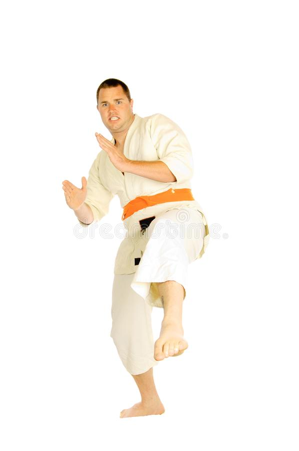 Martial art person isolated. Young man doing martial art exercises isolated on a white background royalty free stock photo