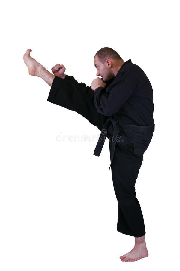 Free Martial Art Side Kick Royalty Free Stock Photo - 12257675