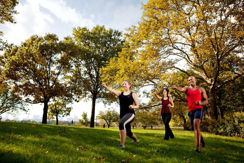 Martial Arts. A group of young adults training martial arts in the park royalty free stock photos