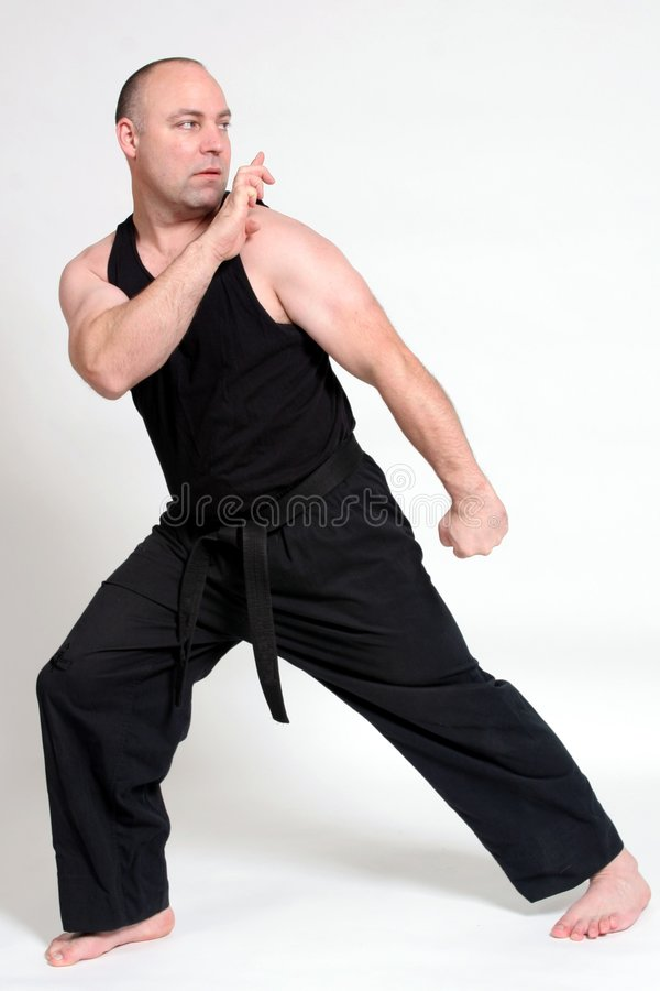 Martial Arts. A man demonstrating Karate techniques stock image