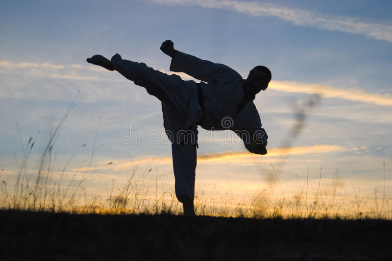 Download Martial arts stock image. Image of caucasian, silhouette - 4900643