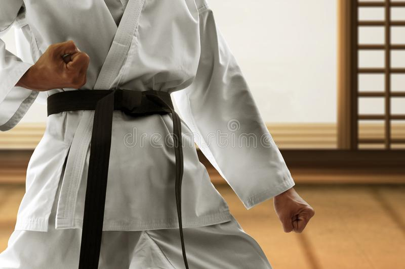 Martial art fighter in dojo royalty free stock image