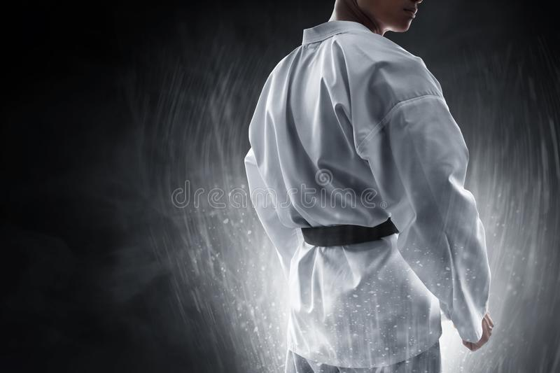Martial arts fighter fighting pose royalty free stock photos
