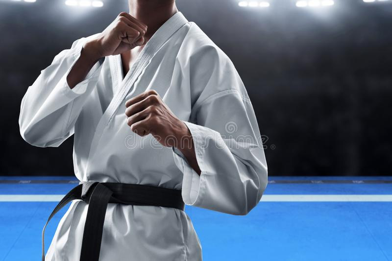 Martial arts fighter fighting pose stock photo