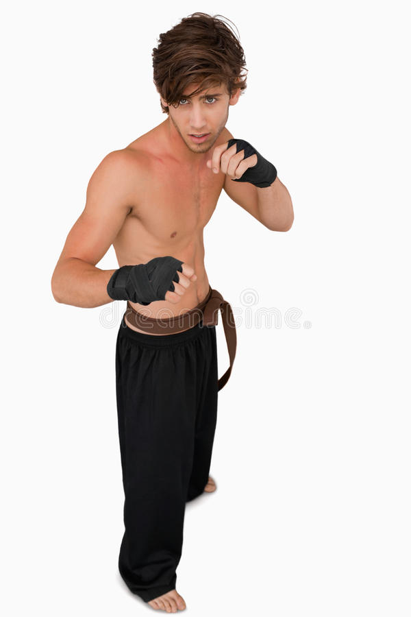 Download Martial Arts Fighter In Fighting Stance Stock Photo - Image: 25336388